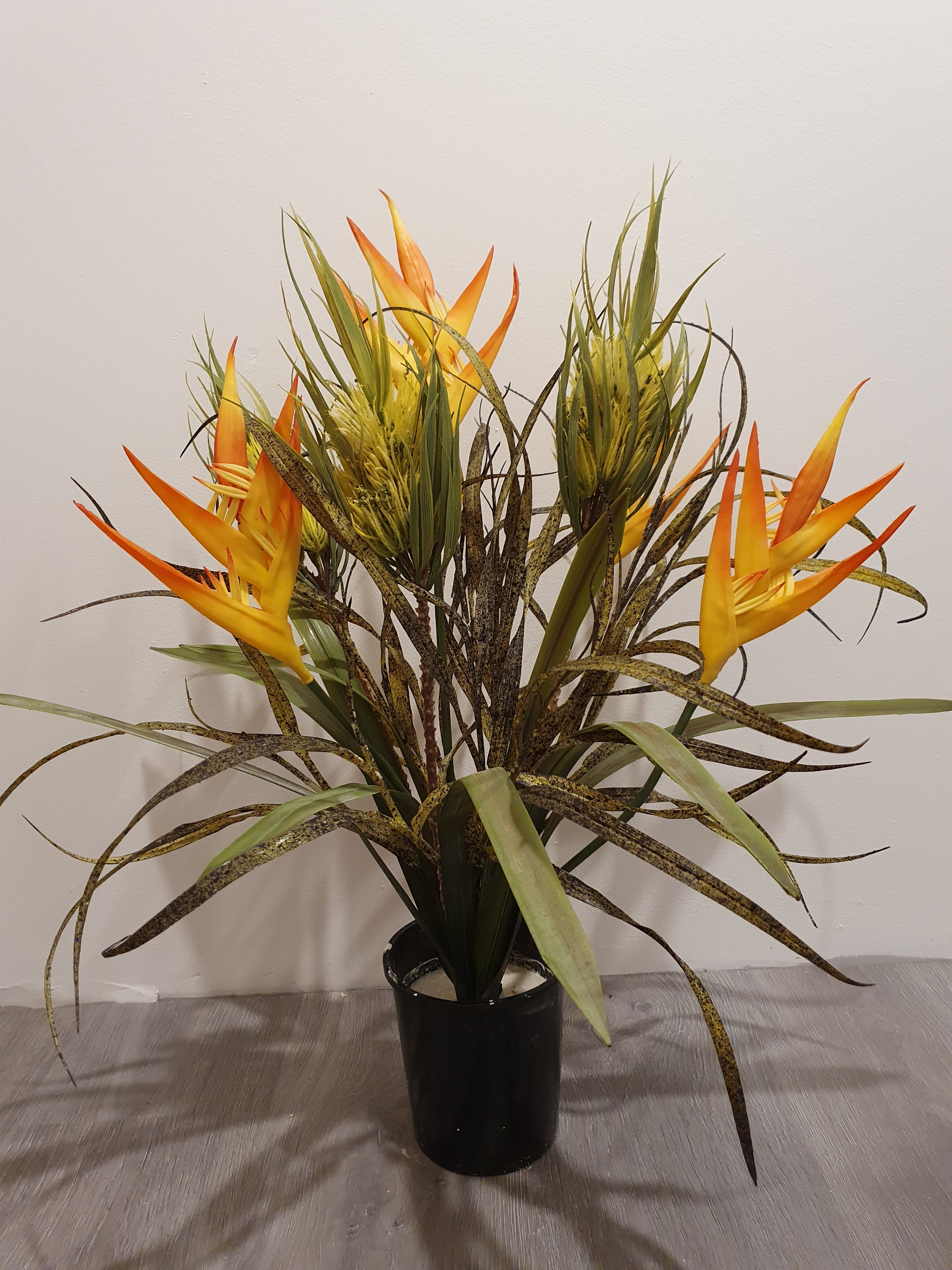 Small Tropical Flower $19