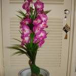 Small Flowering Trees $49 - $89