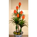Flowering Trees Approx. $59 - $99