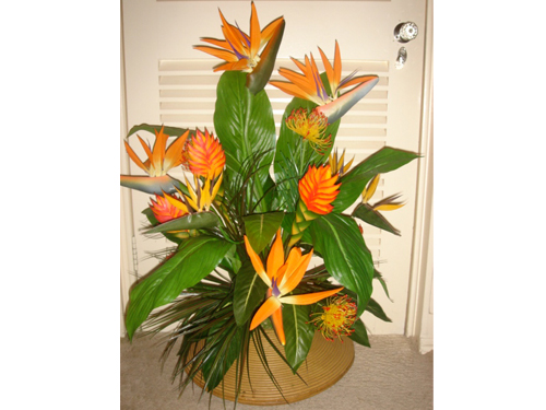 Large Tropical Flower $79