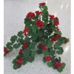 Flowering Vines range $22 - $32